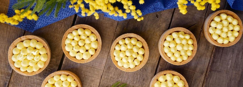 Mimosa Moderna