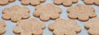 PEANUTS' BUTTER BISCUITS